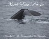 North East Russia: Kamchatka to Chukotka