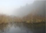 01 the fog of late fall