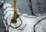 04 winter pond pattern