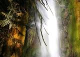 34 falls by lake cushman