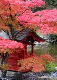 120 pt defiance shrine