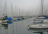 11 shilshole marina