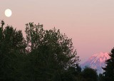 78 full moon, mountain from franklin park