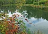 09 titlow pond
