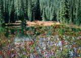 40 fall at reflection lake