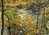 6 cedar river through gold