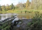 40 chambers creek