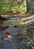 46 fall creek by dewatto