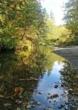 47 dewatto river