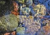 48 ripples on rocks