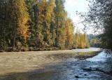 65 white river fall
