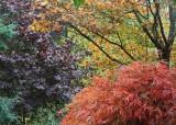 71 leaf palette