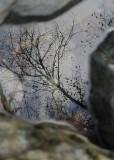 71 reflecting rock pool