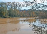 94 a muddy nisqually river