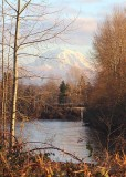 80 puyallup winter afternoon 2