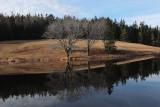 Little long Pond g  12-25-15-pf.jpg
