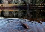 Kelley - Little Long Pond  b 12-25-15-ed-pf.jpg