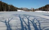 Little Long Pond 2--7-16-pf.jpg