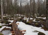 Brookside Trail Branch Pond c  2-21-16-pf.jpg