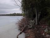 Perch Pond b -3-10-16-pf.jpg