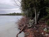 Perch Pond b -3-10-16-pf -ed.jpg