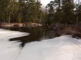 Ducktail  Pond  b 3-14-16-pf.jpg