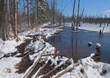 Beaver Pond Newman Hill-Hinds 3-22-16-pf.jpg