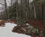 Stone Wall Hills to Sea Trail 3-26-16-pf-ed.jpg