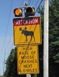 moose sign 8-28-09-pf.jpg