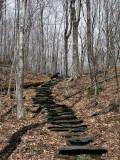Near End of Moose Pond Trail 4-25-10-ed-pf.jpg