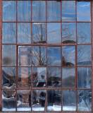 Window  - Belfast  2-13-13-ed-pf.jpg