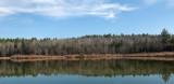 Black Pond  Newman Hill - Hinds 11-12-12-pf.jpg