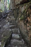 Steps- New Trail Harbor Brook  8-7-16-pf.jpg