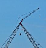Cranes  Bangor 4-15-12-ed-pf.jpg
