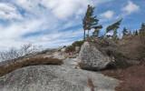 Tunk Mtn. Trail c 4-8-13-pf.jpg