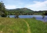 Little Long Pond b 6-2-16-pf.jpg