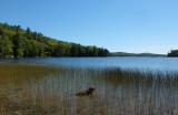 Kelley - Spring River Lake 9-22-16-pf.jpg