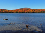 Kelley - Big Moose Pond b 10-7-16-pf.jpg