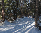 Glenburn  Trails 1-5-17.jpg