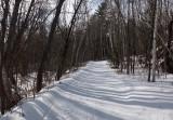 PB Trail Along Kenduskeag 1-29-17.jpg