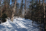 N. Headwaters Trail Sheepscot Headwaters 2-4-17.jpg