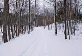 Trail Along Kendusleag b 2-15-17.jpg