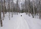 Trail Along Kendusleag c  2-15-17.jpg