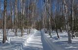 Side Trail Dover-Foxcroft b 2-17-17-pf.jpg