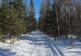Glenburn Snowmobile  Trail  b 2-21-17.jpg
