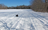 Kelley - Glenburn Snowmobile  Trail c  2-21-1.jpg