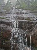 Along Dorr Mtn East Face Trail 5-30-09-ed-pf.jpg