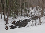 Stream P B Trail Along Kenduskeag 2-23-17.jpg