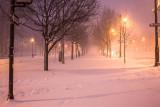 Walk During Blizzard Jonas