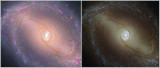 NGC 1433 HST Comparison